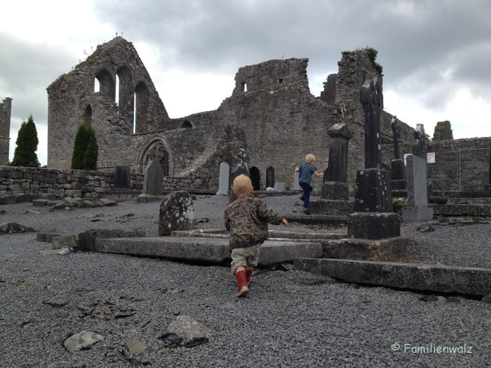 Dublin - Feen, Sagen, Guinness  - Auf dem Weg nach Cashel