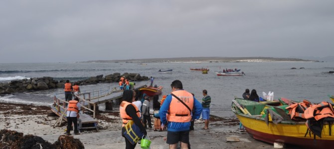 Aug in Aug mit einem Wal – Unser Tag im Humboldt-Nationalpark