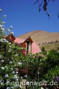 Dem Herzen folgen, Coquimbo streifen und in Pisco Elqui für immer bleiben wollen - Hotel El Tesoro in Pisco Elqui