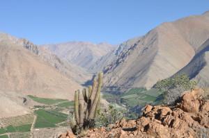 Dem Herzen folgen, Coquimbo streifen und in Pisco Elqui für immer bleiben wollen - Im Valle de Elqui,  © Ekkehard & Almut Helmhold