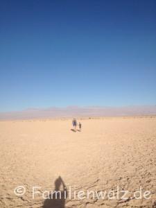 Höhenrausch und Salzkristalle - Wüstenglück in der Atacama - In der Atacamawüste