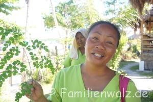 Barbecue im Wohnzimmer oder: Wie lebt es sich auf den Philippinen? - Die Masseurin Janet mit Malunggay-Blättern