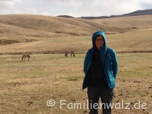 Was ist eigentlich Zuhause? Sieben elementare Zutaten - Im Hustai National Park/ Mongolei