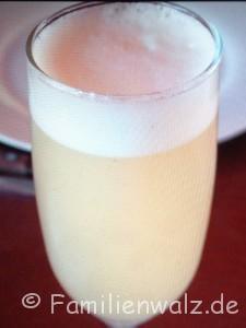 Magisches Pisco Elqui - Sterne, Wein und echte Schätze - Pisco Sour